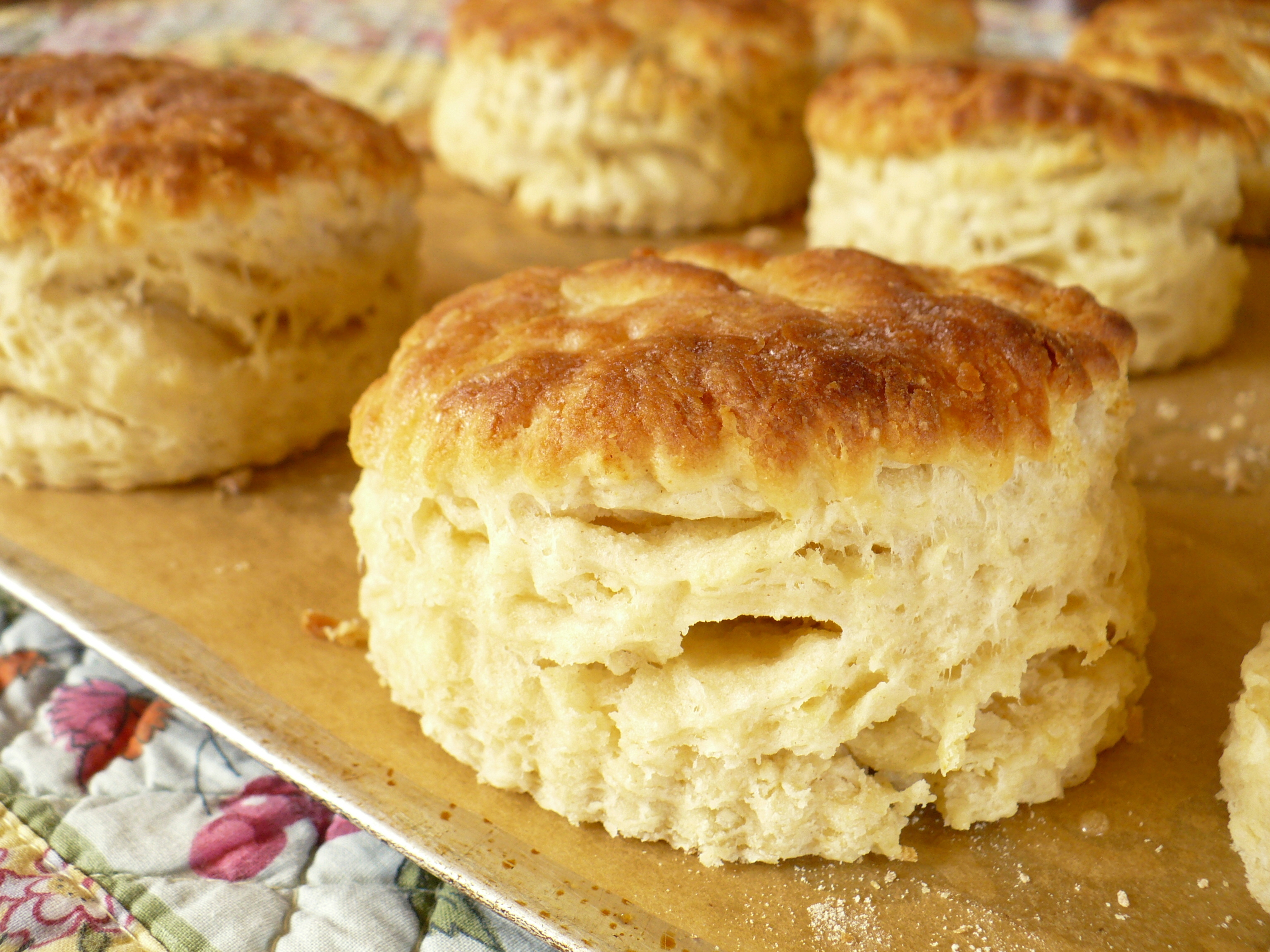 Tender, flaky mile-high buttermilk biscuits.